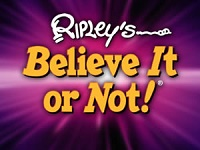 Ripley's Believe It or Not! Museum Key West